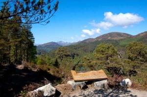 IMPACTED Glen Affric National Nature Reserve