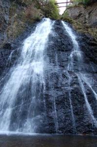 IMPACTED Guisachan Home Falls
